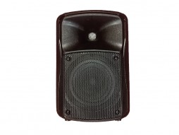 Prijenosni zvučnik, mini razglas s punjivom baterijom + bežični mikrofon UHF, 40W RMS, 6,5″, MP3, USB, SD, BT, Mixer, EQ – Tesla