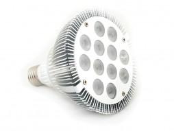 LED žarulja E27, Par38, 12x1W, 60°, topla bijela, dimabilna – X-Light