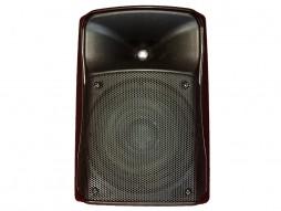 Prijenosni zvučnik/mini razglas s punjivom baterijom, 40W RMS, 8″, MP3, USB, SD, BT, Mixer, EQ – Tesla